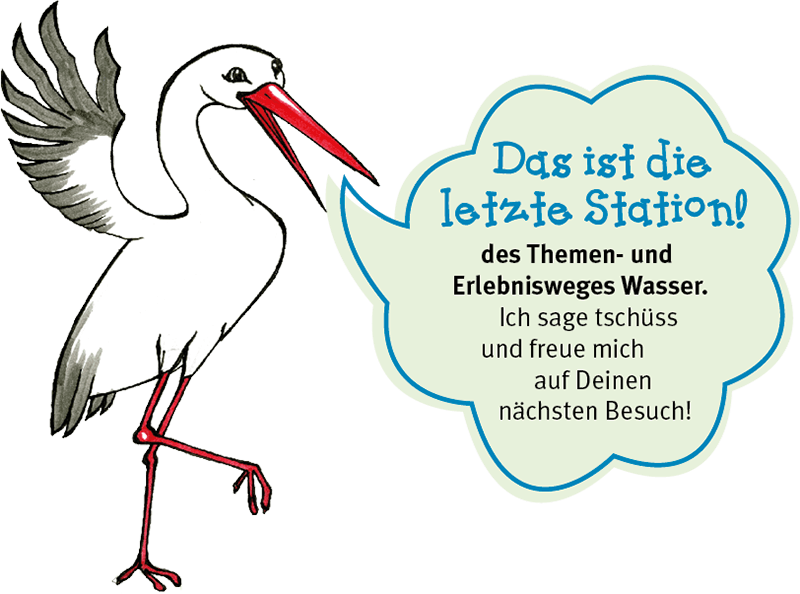 Storch Tom. Letzte Station